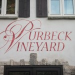 Catering at Purbeck Vineyard