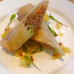 Duck spring rolls, hoisin sauce, cucumber ribbons, mango, pineapple & chilli salsa